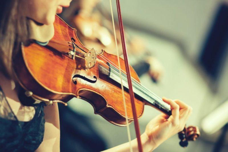 弦楽器の画像